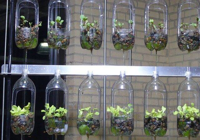 Awesome Indoor Garden Planters Ideas Butterbin