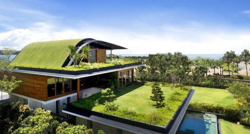 Beautiful Green Roof Design Modern House Home Ideas