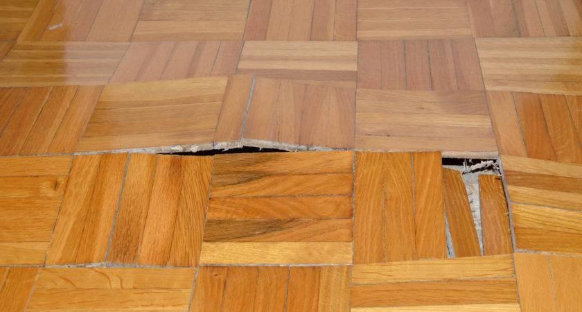 Best Hardwood Floors Warping Tip Reduce