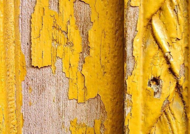 Best Mustard Yellow Paints Ideas Pinterest Pretty