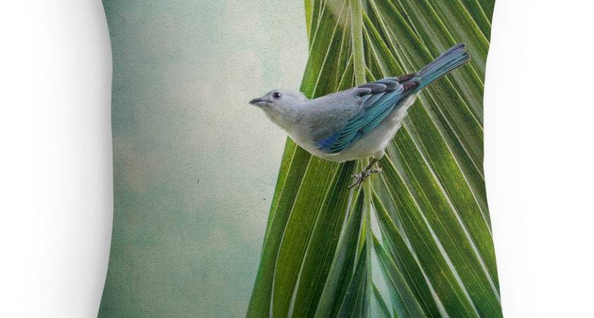 Bird Decor Nature Blue Cushion Costa Rica