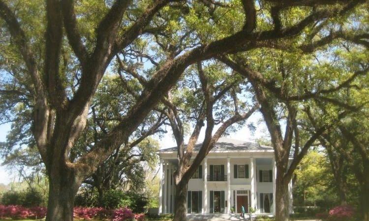 Bragg Mitchell Mansion News