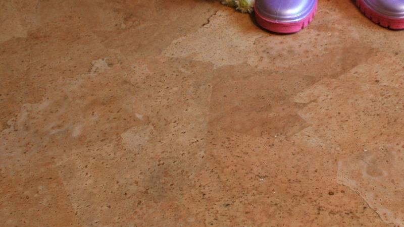 Cork Flooring Pros Cons Homesfeed