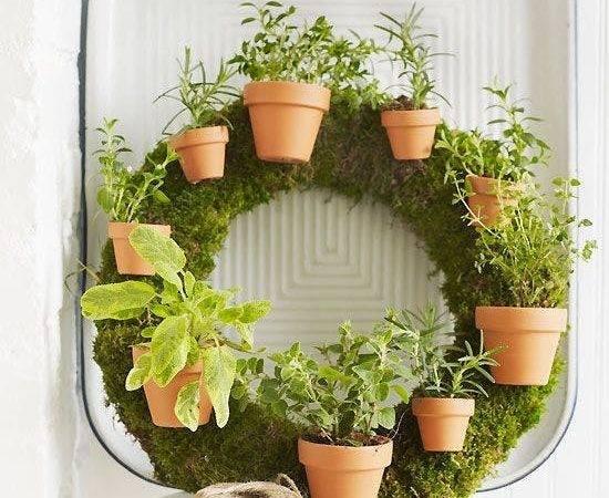 Creative Indoor Gardening Ideas Home Trends Magazine