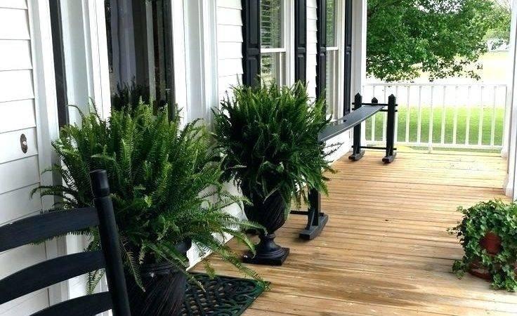 Front Porch Flooring Ideas Plantoburo