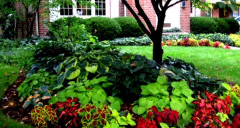 Front Yard Landscaping Ideas Designs Photos Html