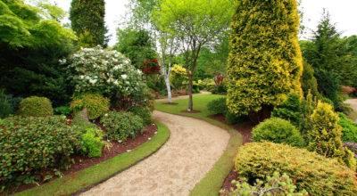 Golden Landscaping Landscape Design Installation