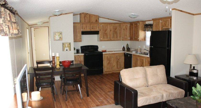 Howling Mobile Home Decorating Ideas Single Wide