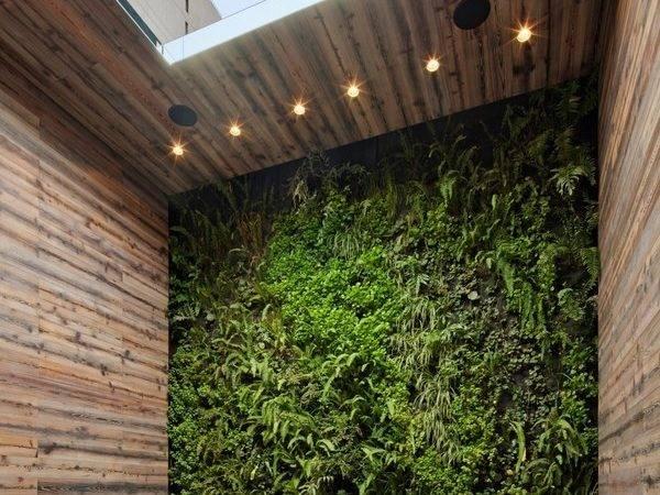Indoor Garden Design Ideas Types Gardens