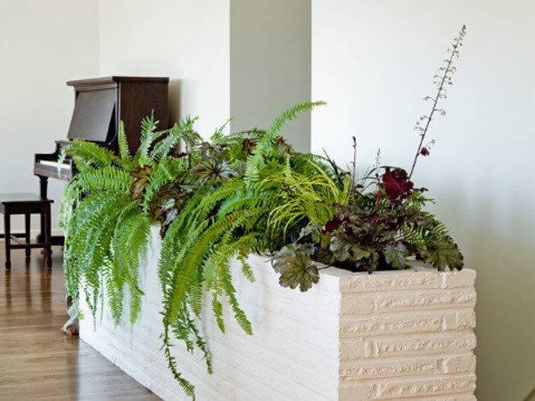 Indoor Garden Ideas Your Source Architecture