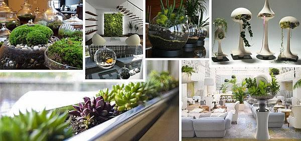 Indoor Gardening Ideas Beautify Your Space
