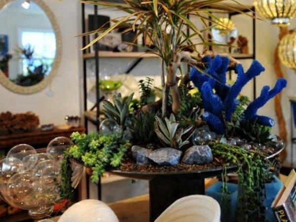 Indoor Gardening Ideas Interiorholic
