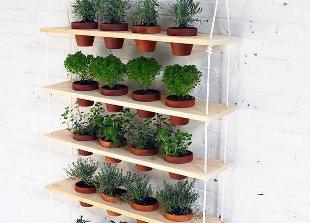 Indoor Herb Garden Ideas Homesteading Gardening Tips