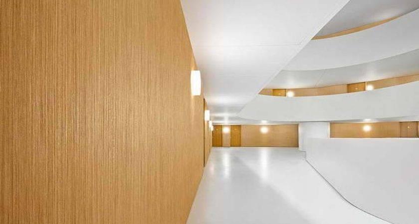Interior Designs Walls Wood Wall Covering Ideas