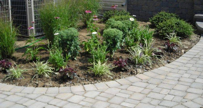 Landscaping Front Ideas Around Patio