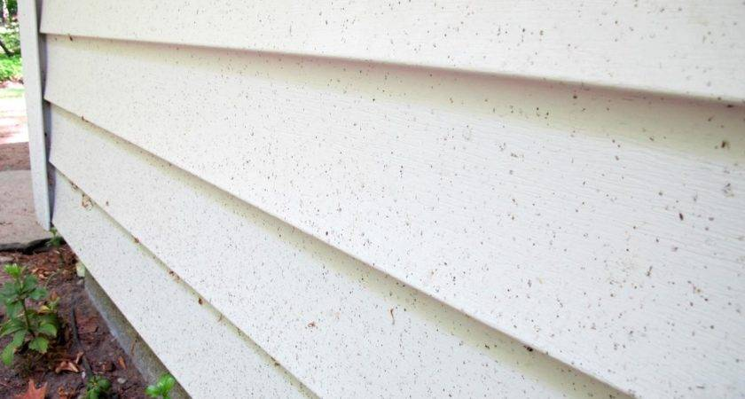 Learn Best Way Clean Vinyl Siding Tos Diy