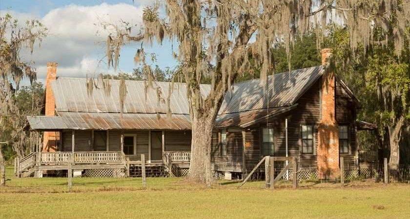 Live Oak Old House Dreams
