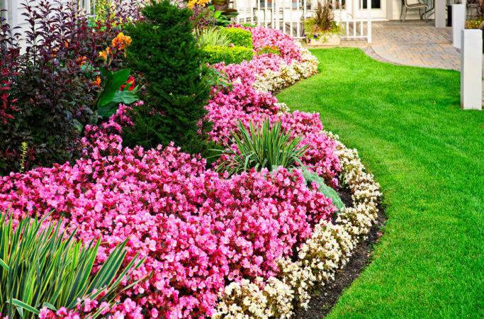 Magical Flower Bed Ideas Designs