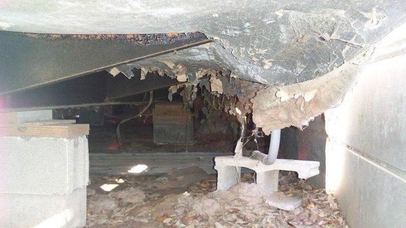 Needs Underbelly Repair Bestofhouse