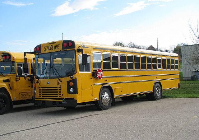 New Blue Bird School Bus Flickr Sharing