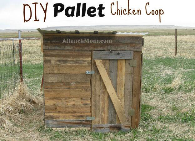 Pallet Chicken Coop Plans Can Build