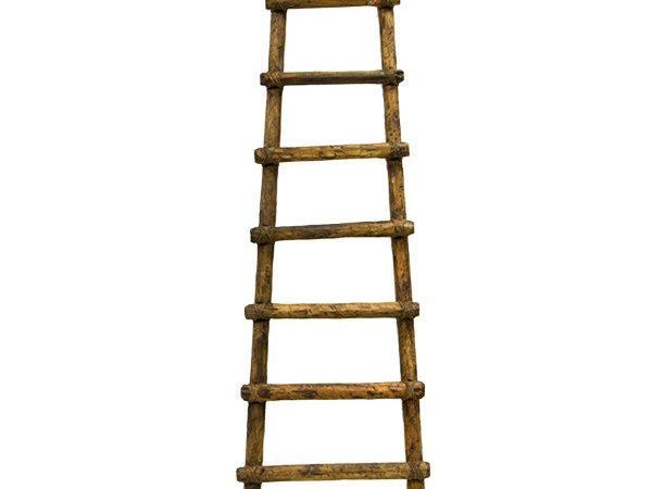 Primitive Ladder