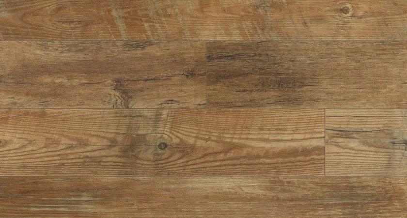 Shop Stainmaster Huntington Coffee Wood Low Gloss