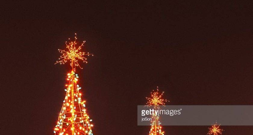Three Illuminated Wire Frame Christmas Trees Night