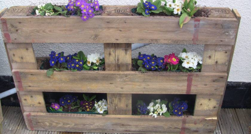 Upcycled Wooden Pallet Vertical Gardening Ideas Shabbyshe