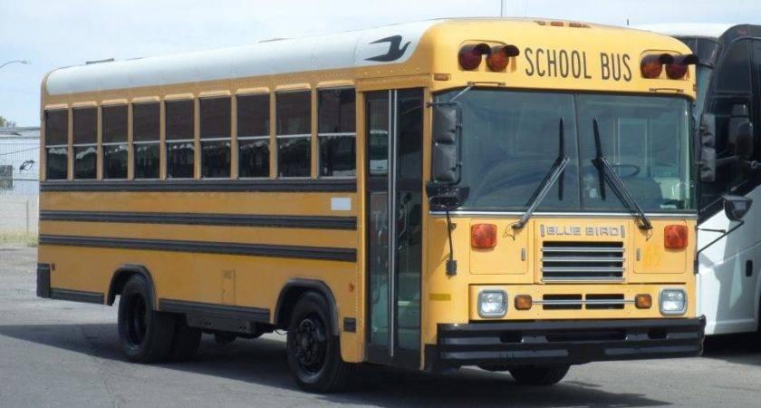 Used Blue Bird School Bus