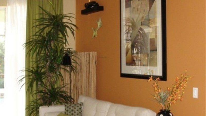 Wall Colors Living Room Ideas Home Design Jobs