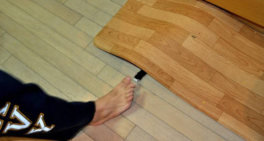 Woodwork Easy Things Make Wood Pdf Plans